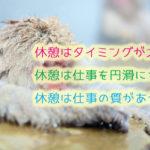 猿の露天風呂